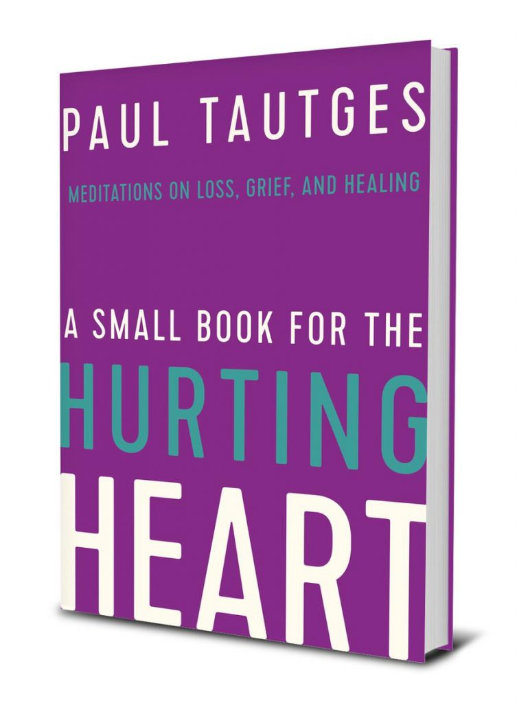 A Small Book for the Hurting Heart Cover