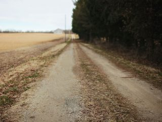 Habits Versus Ruts: What's the Difference?