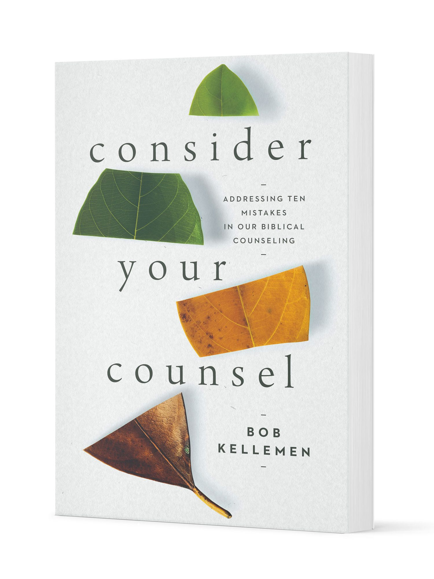 Consider Your Counsel Cover Mockup