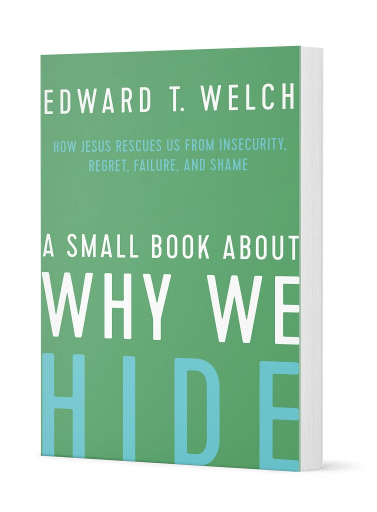 A Small Book About Why We Hide Thumbnail
